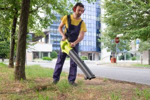 Cordless leaf blower comparison – Buying guide, ratings, and more