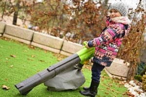 Cordless leaf blower vs gas – Pros and Cons