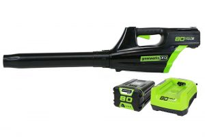 Greenworks Pro GBL80300 Cordless Blower Review