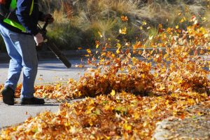 The most powerful cordless leaf blower: Does it exist?
